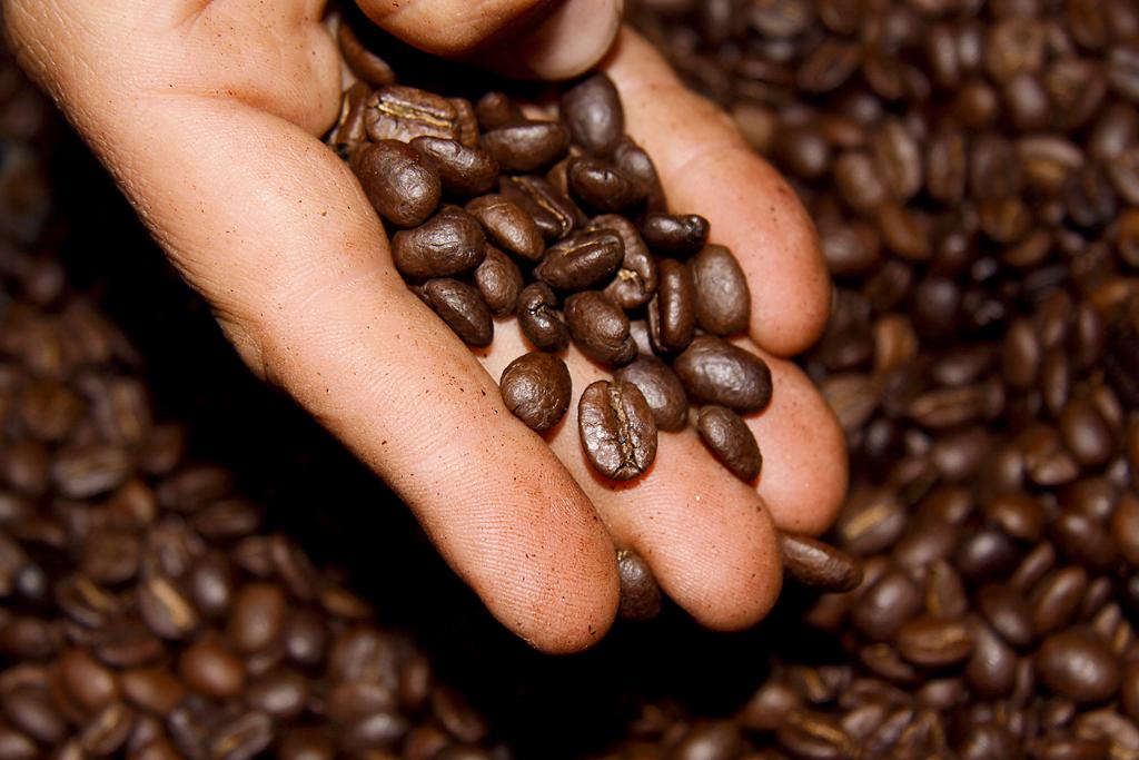 El café es el mejor bronceador natural. Te enseñamos cómo prepararlo en casa