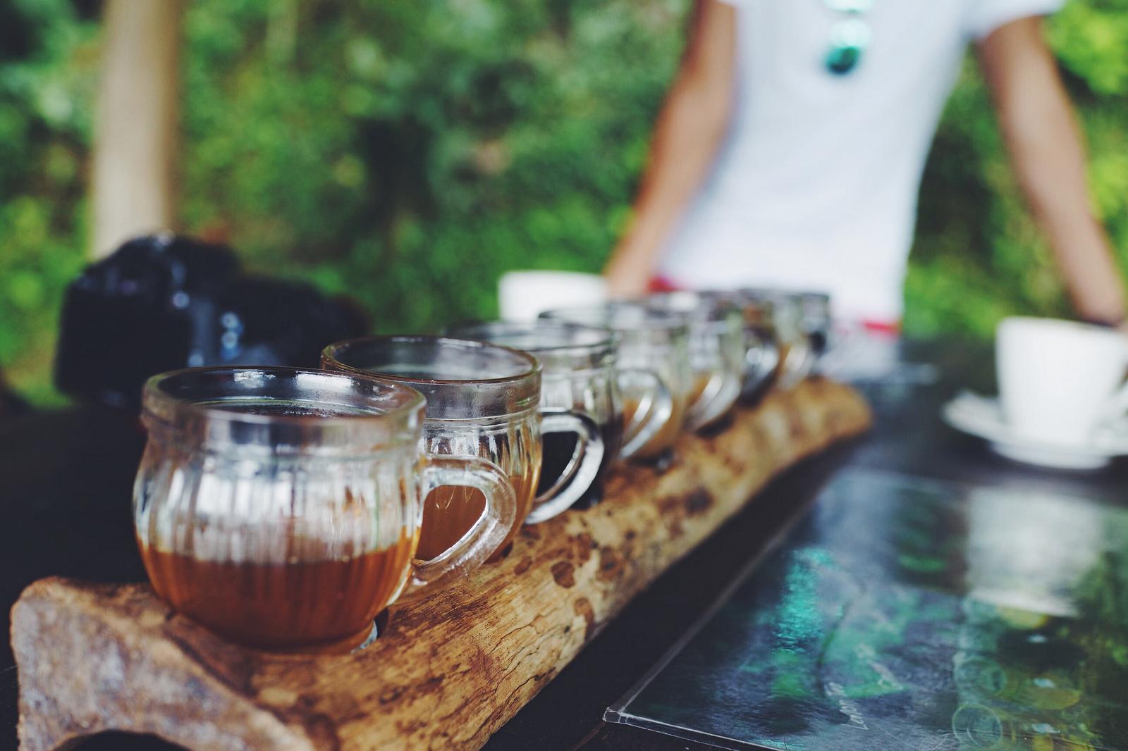 El Kopi Luwak, producido en Indonesia, está considerado como el café más caro del mundo