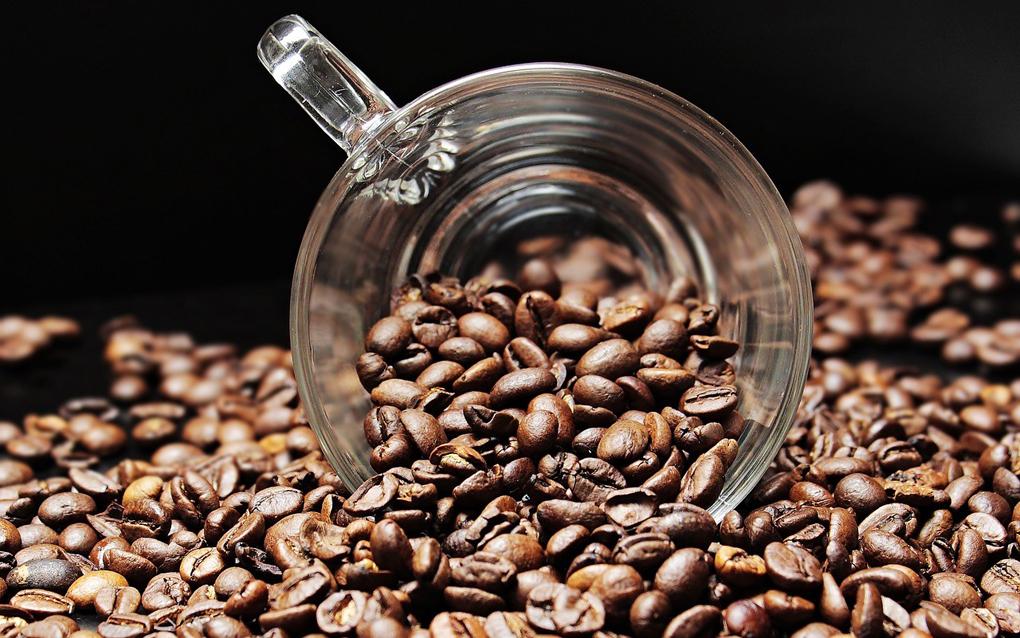 Descubre las diferencias entre el café de tueste natural, torrefacto y mezcla
